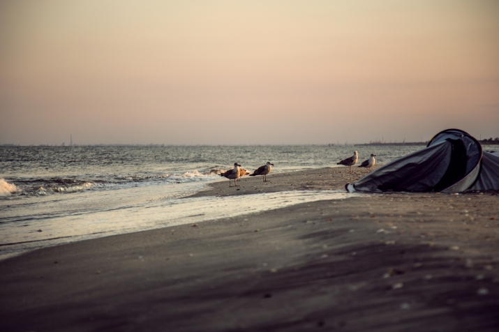 plener morze rumunia fotograf ślubny