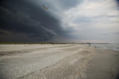 plaża fotograf ślubny rzeszów